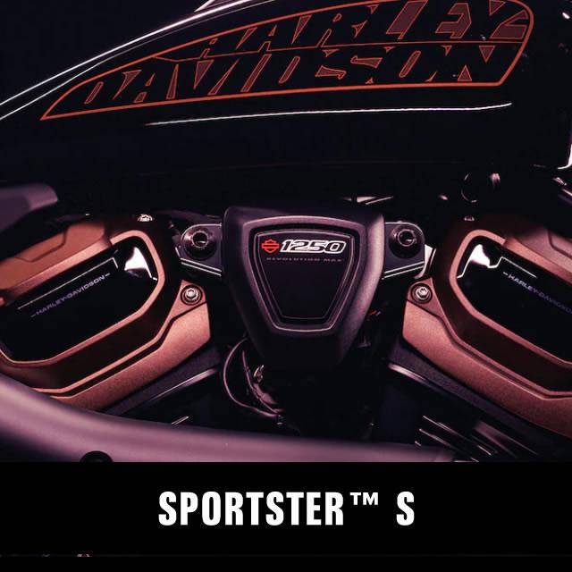 Sportster S
